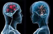 Οι εγκεφαλικές διαφορές ανδρών και γυναικών